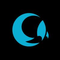 Логотип компании «MoonSolution»