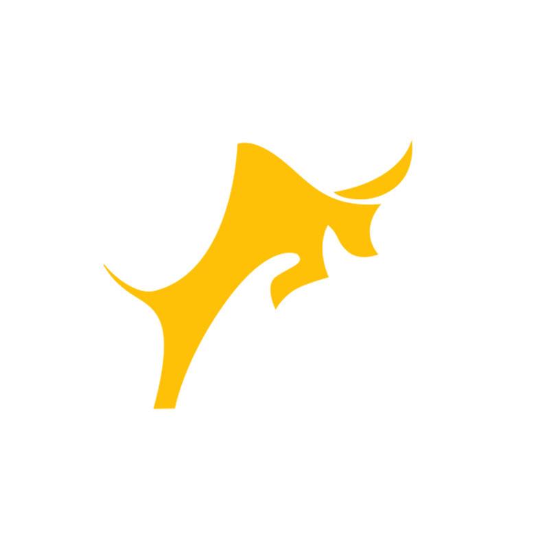 Логотип компании «SageSeller»