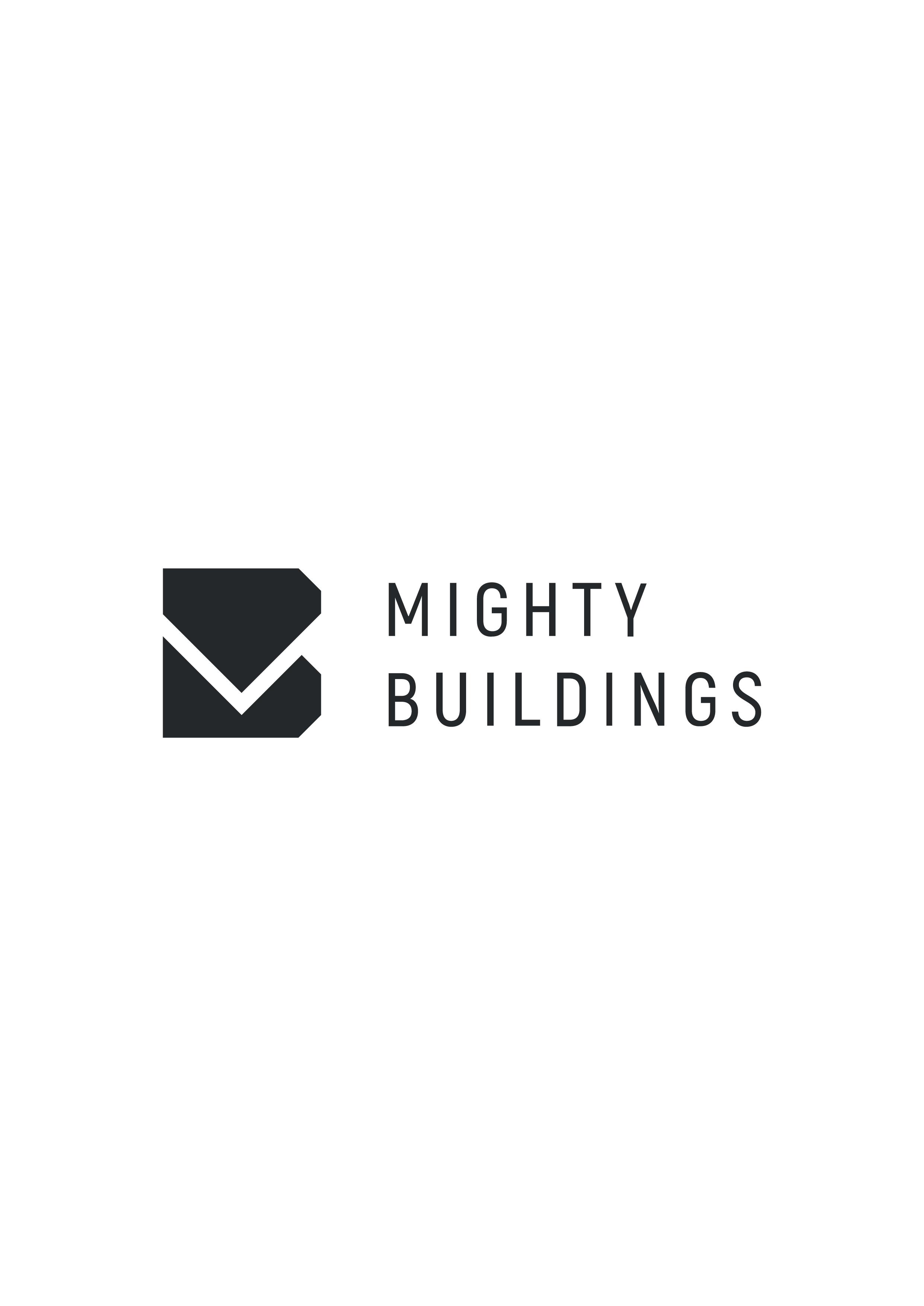 Логотип компании «MightyTech»