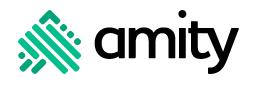 Логотип компании «Amity»