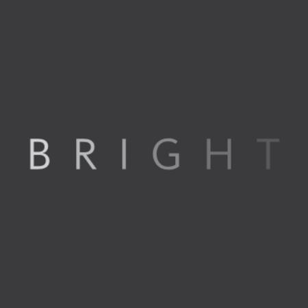 Логотип компании «Bright group»