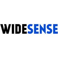 Логотип компании «Widesense»