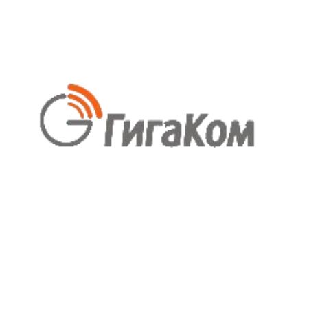 Логотип компании «Гигаком»
