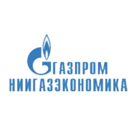 Логотип компании «НИИ Газэкономика»
