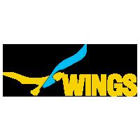 Логотип компании «ВИНГС Солюшнс»