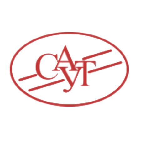 Логотип компании «НПО САУТ»