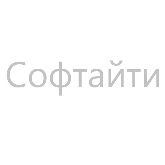 Логотип компании «Софтайти»