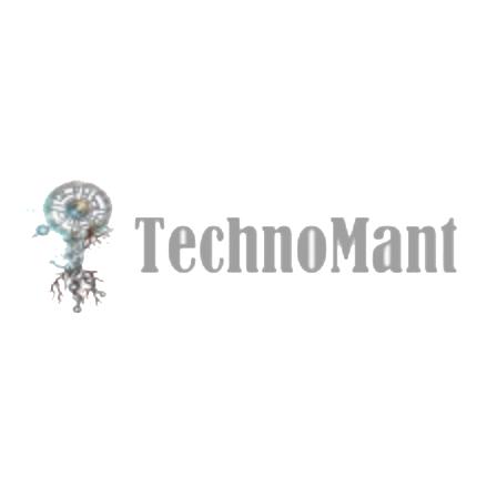 Логотип компании «Technomant»