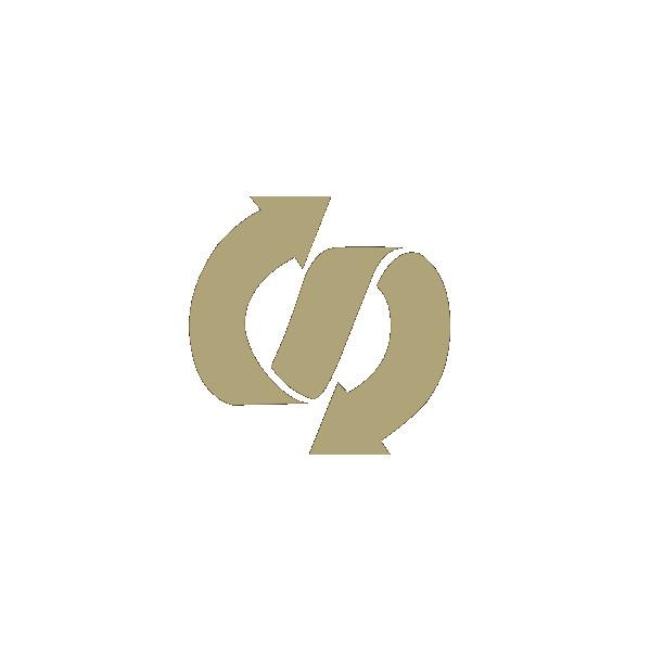 Логотип компании «FlexPay»