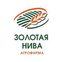 "Логотип компании «ООО ""Агрофирма ""Золотая Нива""»"