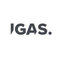 Логотип компании «IGAS»