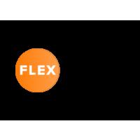 Логотип компании «FlexReality»