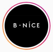 Логотип компании «B-Nice LLC»