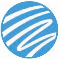 Логотип компании «Lazebra»