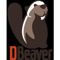 Логотип компании «Райдер Софт»