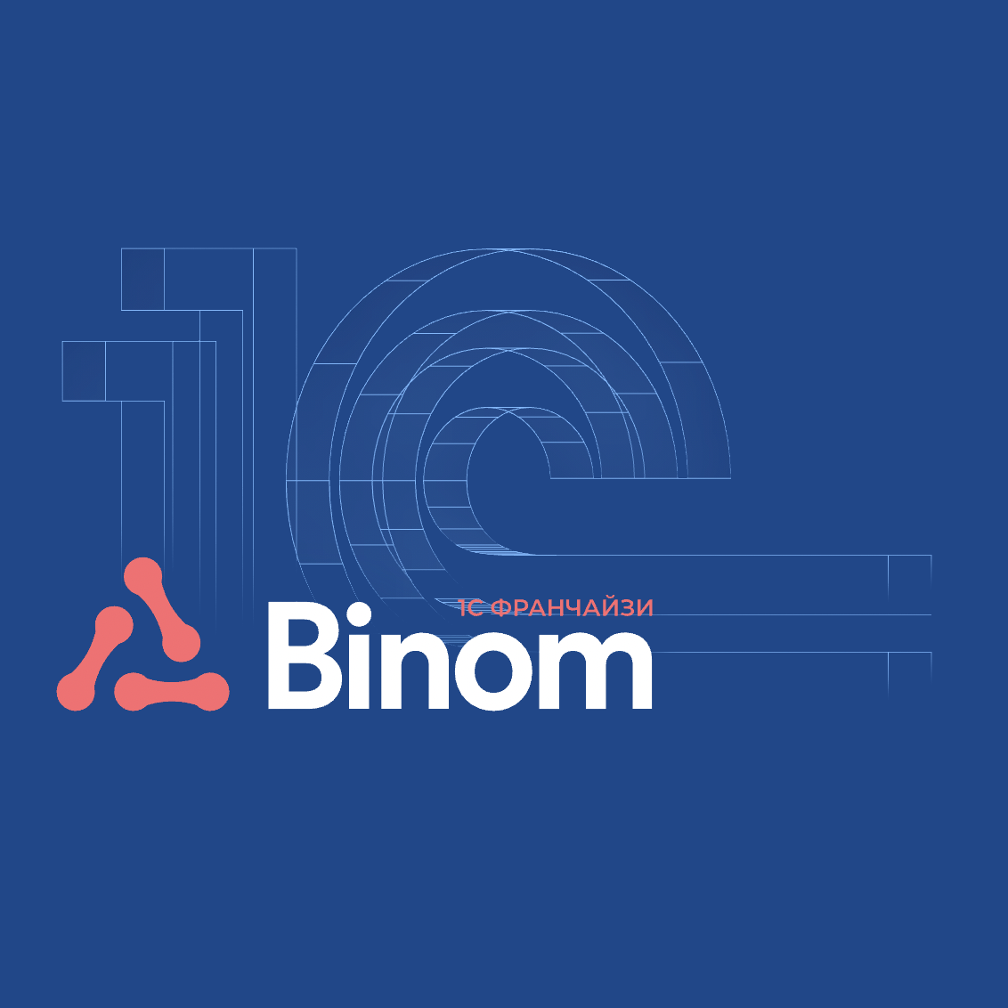 Логотип компании «BINOM»
