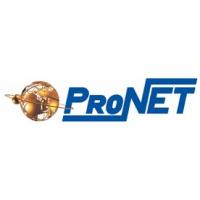 Логотип компании «Пронет»