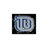 Логотип компании «Тверской вагоностроительный завод (ТВЗ)»