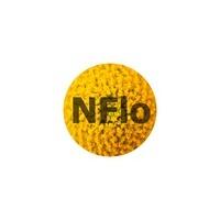 Логотип компании «NFlo интернет магазин цветов»
