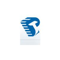 Логотип компании «Русский трансформатор»