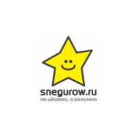 Логотип компании «Студия snegurow.ru»