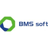 Логотип компании «BMS Soft»