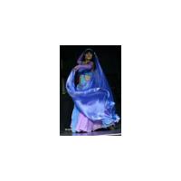 Логотип компании «Студия арабского танца имени Ибрагима Фарраха»