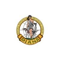 Логотип компании «Школа Натаски Легавых Собак»