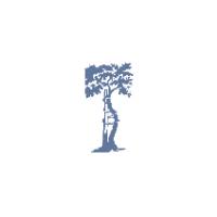 Логотип компании «Новосибирский научно-исследовательский институт травматологии и ортопедии (ННИИТО)»