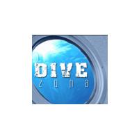 Логотип компании «Дайвзона»