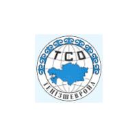 Логотип компании «Тенгизшевройл»
