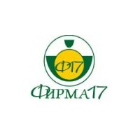 Логотип компании «Фирма17»