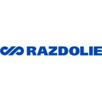 Логотип компании «Раздолье»
