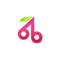 Логотип компании «Brandberry»