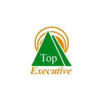 Логотип компании «Top Executive»