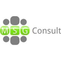 Логотип компании «MSG-Consult»