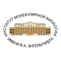 Логотип компании «ИМБ РАН»