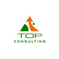 Логотип компании «Top Consulting»