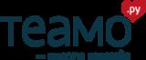 Логотип компании «Теамо.ру»