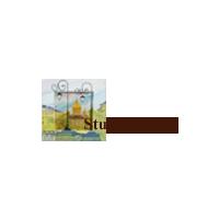 Логотип компании «Фасады Петербурга»