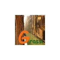 Логотип компании «Studio Grassi»