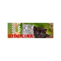 Логотип компании «Питомник Ridolina»