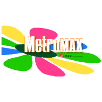 Логотип компании «MetroMAX»