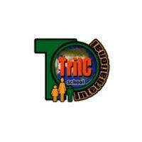 Логотип компании «Русский лицей  TriLC»