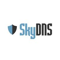 Логотип компании «SkyDNS»