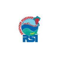 Логотип компании «RSI»