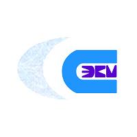 Логотип компании «НИИ Супер ЭВМ»
