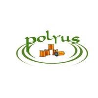Логотип компании «Полюс»
