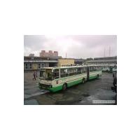 Логотип компании «12 автобусный парк»