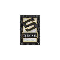 Логотип компании «S-Terminal»